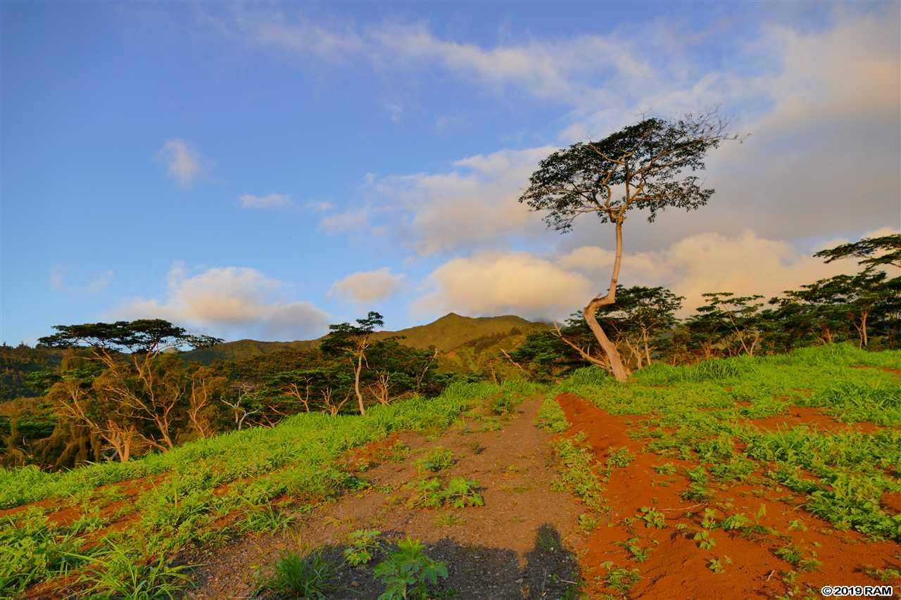 0000 See TMK Rd  Wailuku, Hi 96793 vacant land - photo 11 of 22