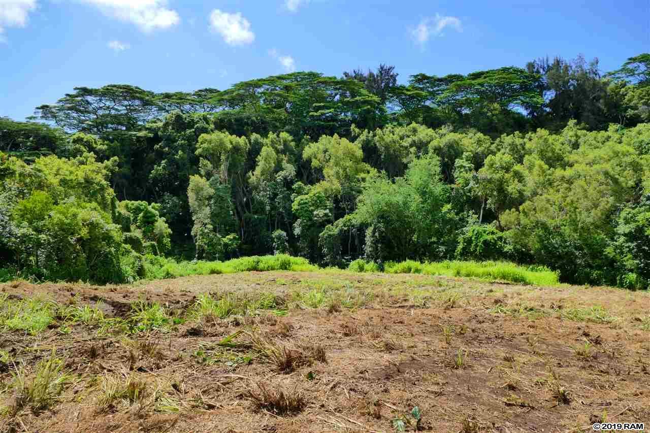 0000 See TMK Rd  Wailuku, Hi 96793 vacant land - photo 12 of 22