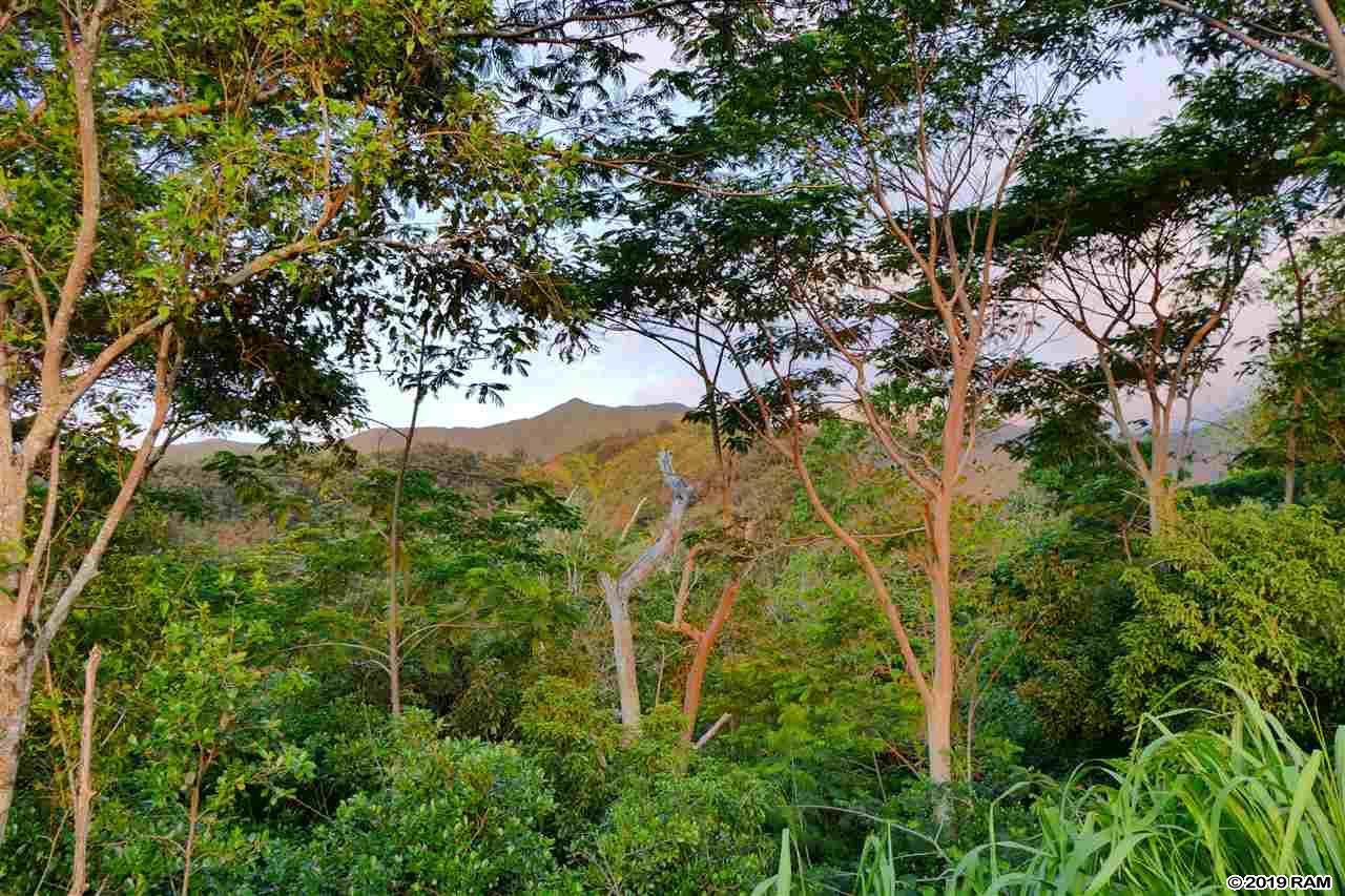 0000 See TMK Rd  Wailuku, Hi 96793 vacant land - photo 10 of 22