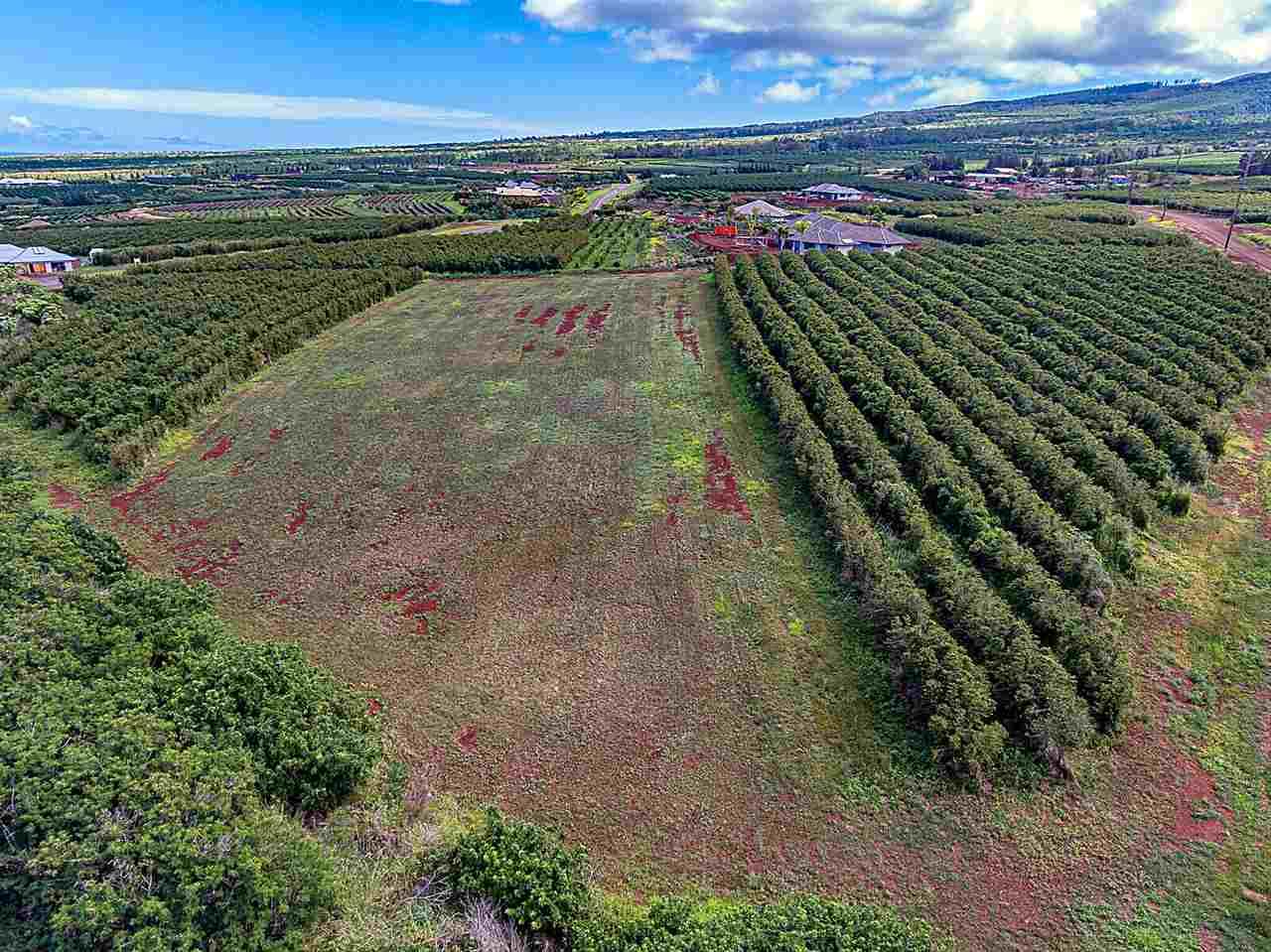 100 Aina Mahiai St Lahaina, Hi 96761 vacant land - photo 6 of 6