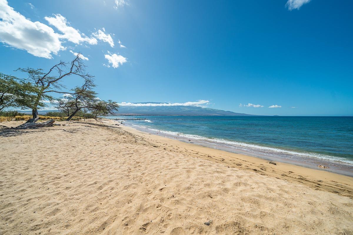 Lauloa condo # 110, Wailuku, Hawaii - photo 29 of 29