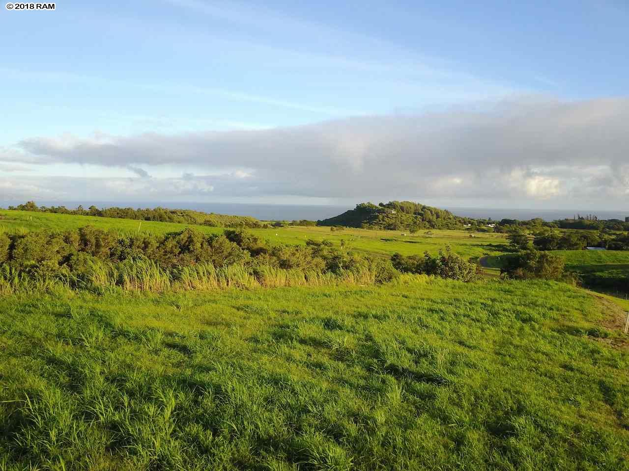 103 Hekuawa St Haiku, Hi 96708 vacant land - photo 1 of 6