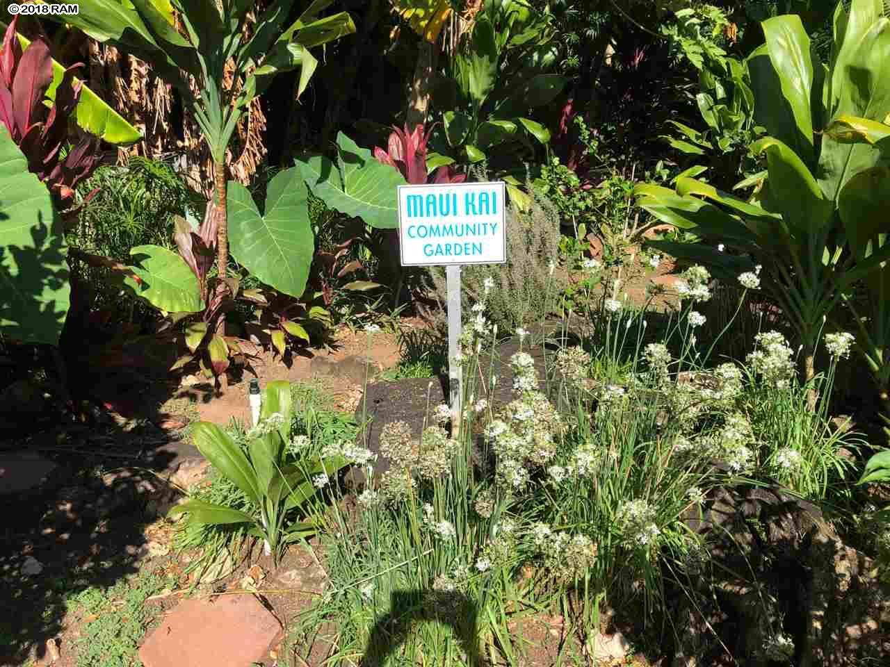 Maui Kai condo # 202, Lahaina, Hawaii - photo 29 of 30