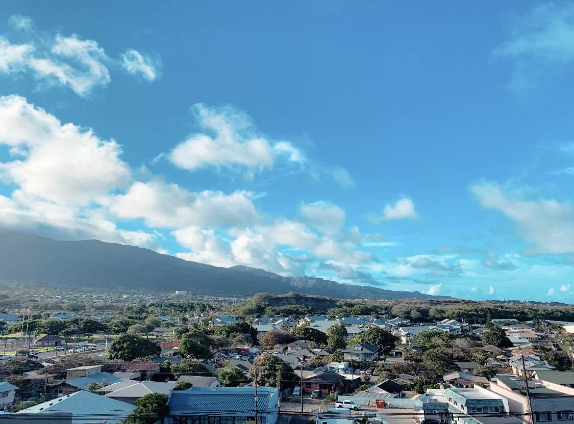 Puuone Towers and Plaza condo # 514, Wailuku, Hawaii - photo 5 of 22