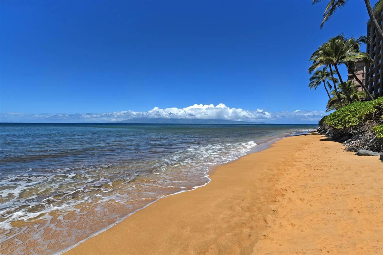 Mahana condo # 109, Lahaina, Hawaii - photo 29 of 30