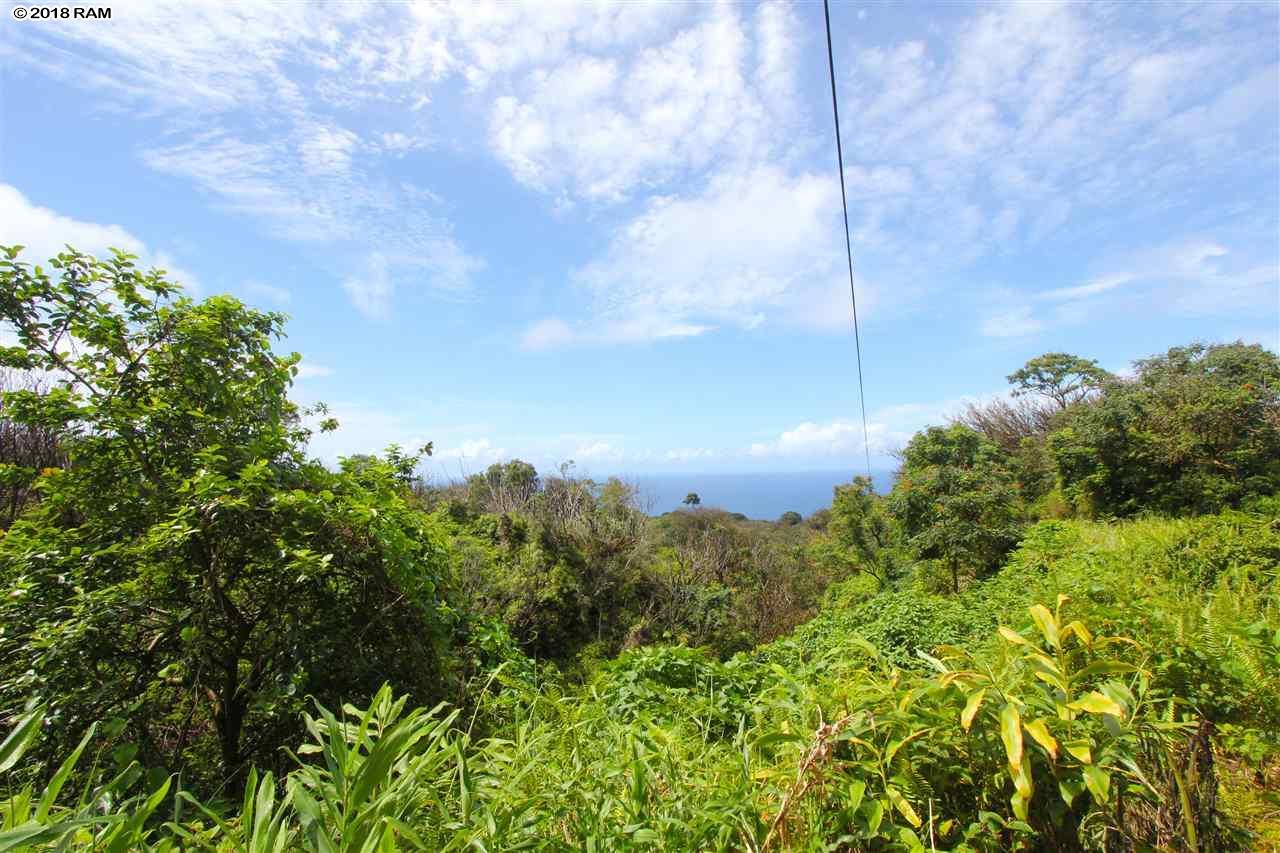 110 Nahiku Rd , Hi 96708 vacant land - photo 2 of 16