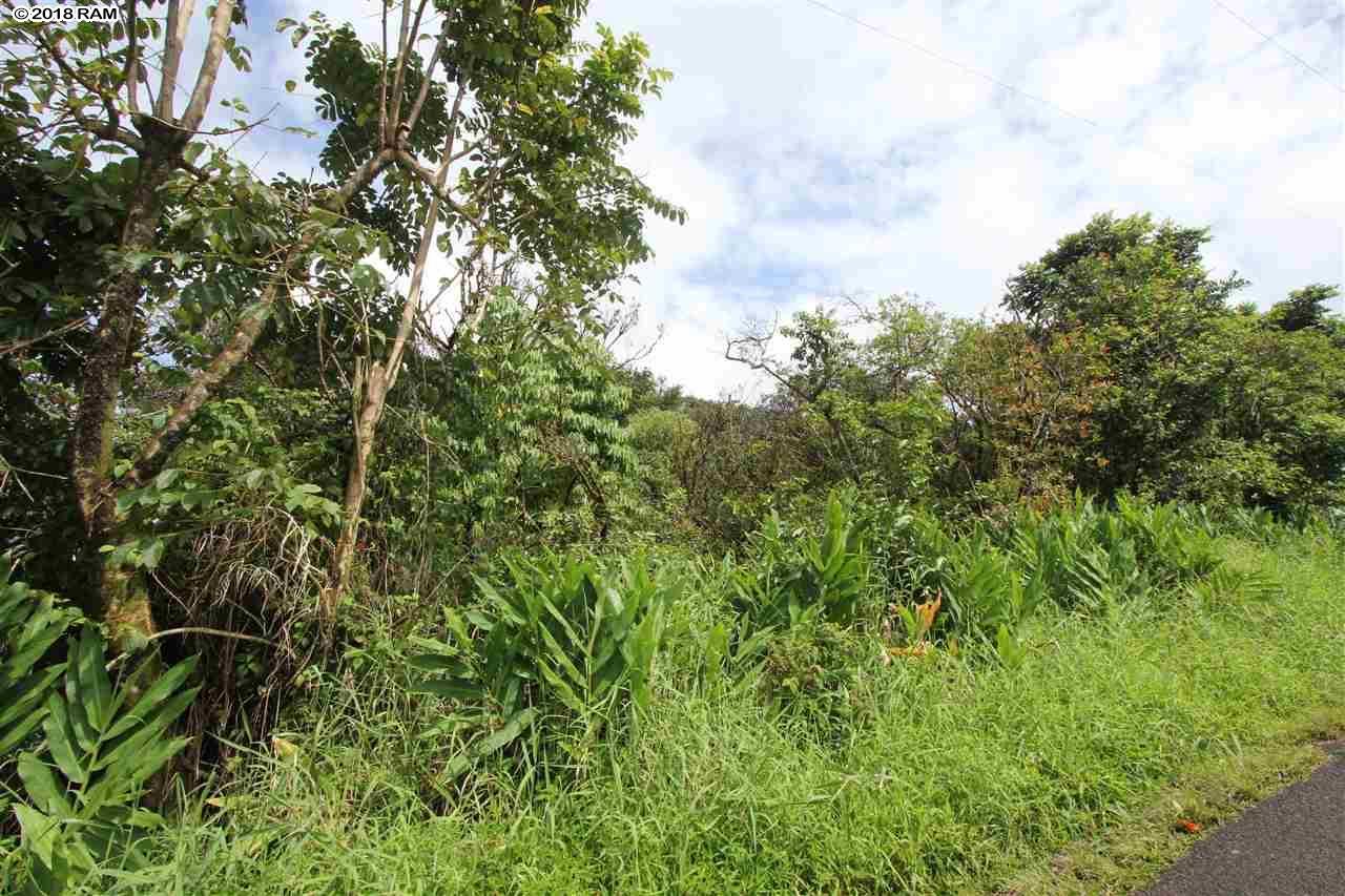 110 Nahiku Rd , Hi 96708 vacant land - photo 11 of 16