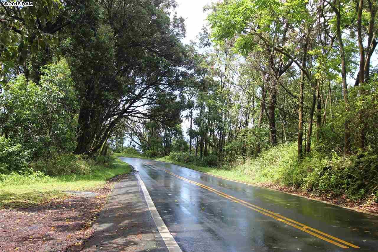 110 Nahiku Rd , Hi 96708 vacant land - photo 13 of 16