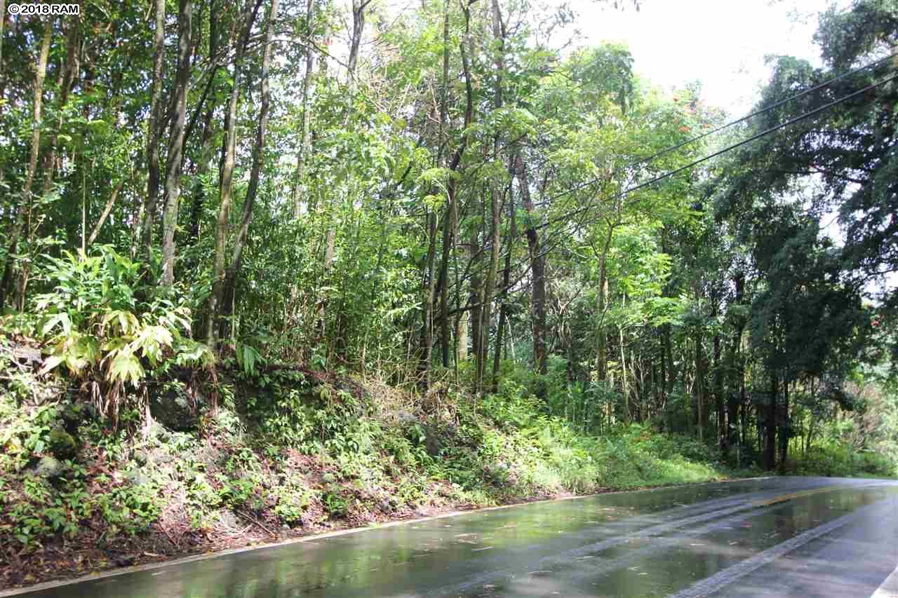 110 Nahiku Rd , Hi 96708 vacant land - photo 15 of 16