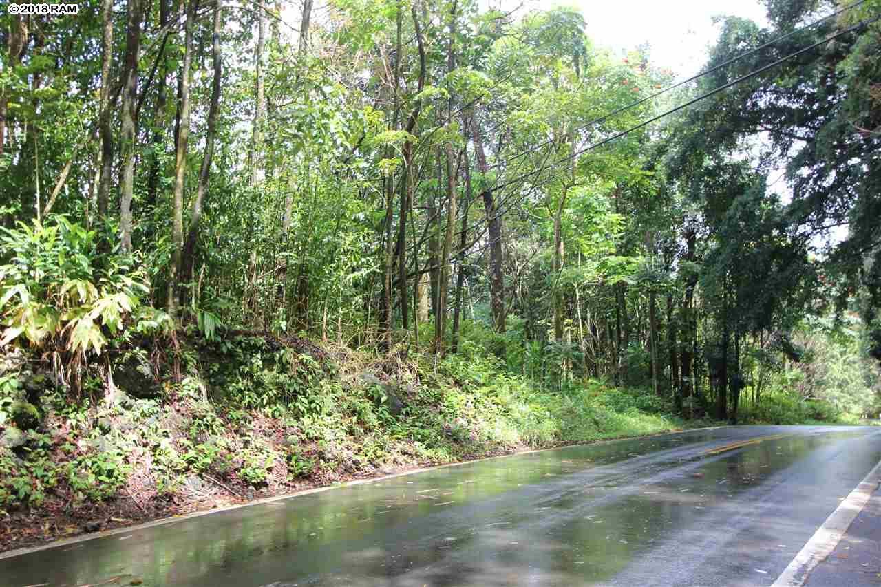 110 Nahiku Rd , Hi 96708 vacant land - photo 16 of 16
