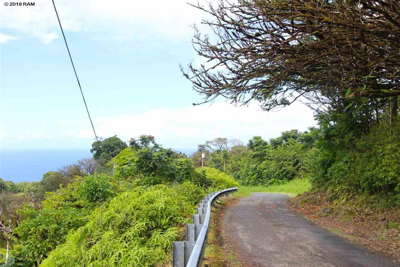 110 Nahiku Rd , Hi 96708 vacant land - photo 3 of 16