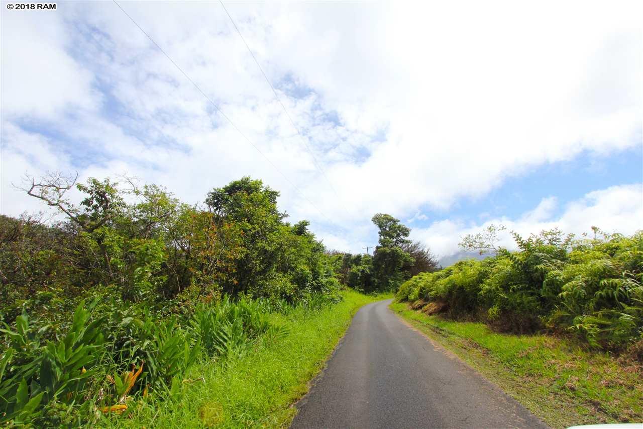 110 Nahiku Rd , Hi 96708 vacant land - photo 5 of 16