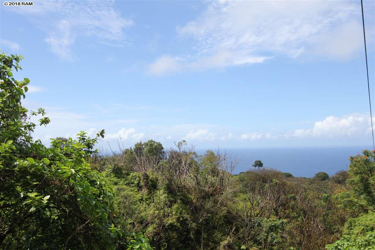 110 Nahiku Rd , Hi 96708 vacant land - photo 9 of 16