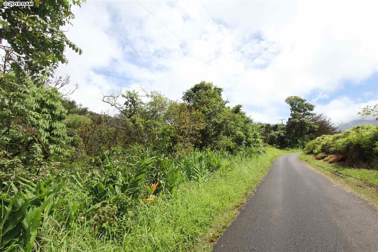 110 Nahiku Rd , Hi 96708 vacant land - photo 10 of 16