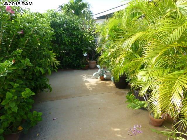 1141  Kahaapo Loop , Kihei home - photo 13 of 19