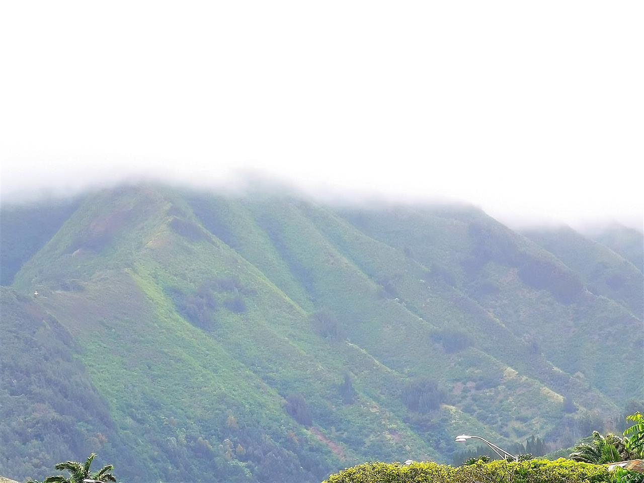 Iao Parkside IV-C condo # 42-203, Wailuku, Hawaii - photo 22 of 23