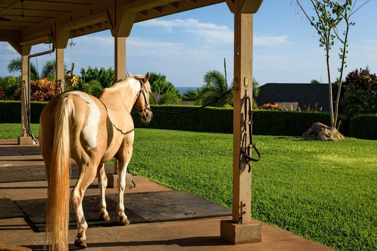132  Mele Komo Pl Lahaina, Lahaina home - photo 27 of 30