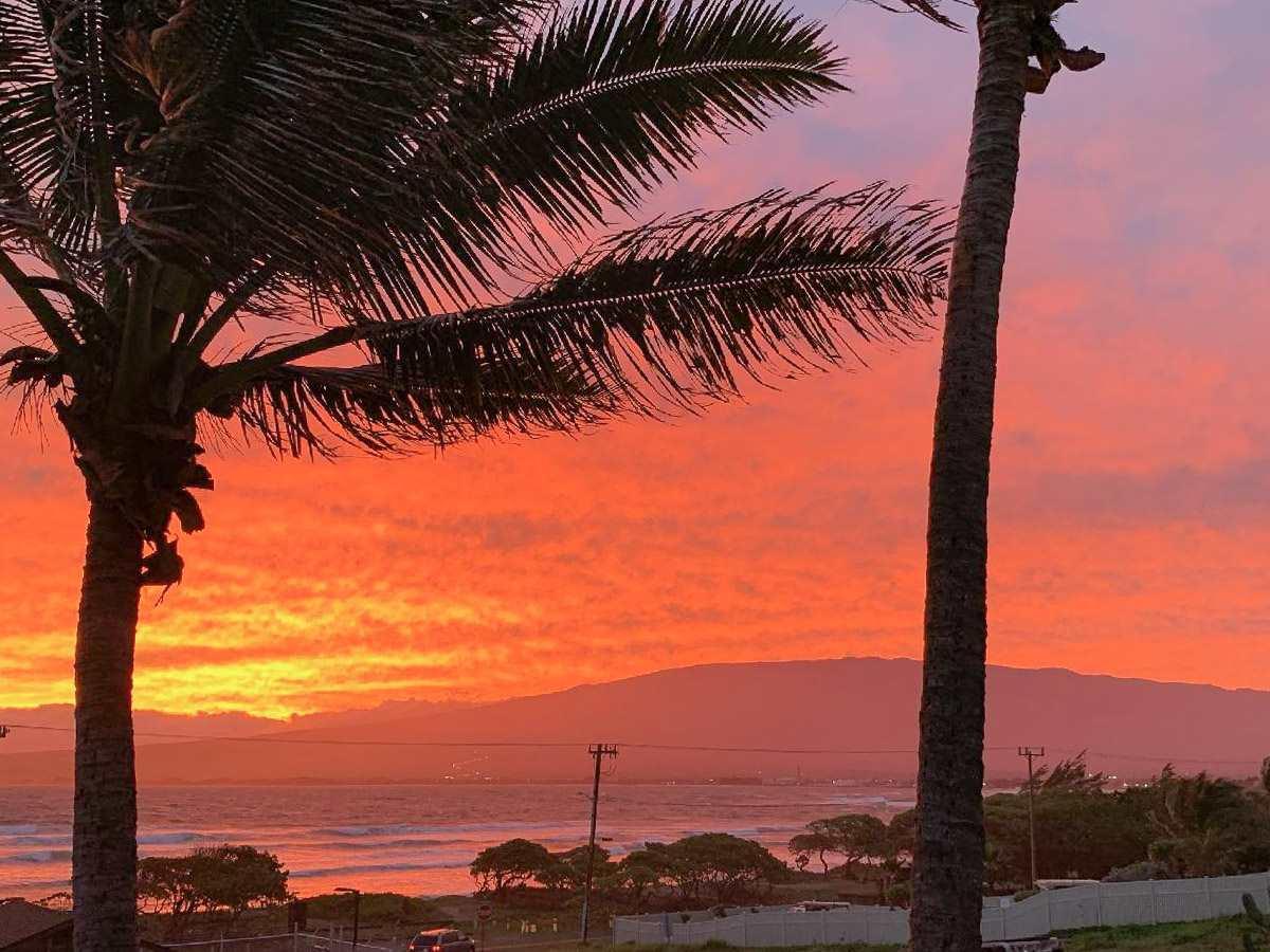 1382  Hiahia St Waiehu, Wailuku home - photo 28 of 30