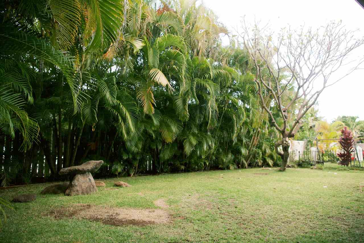 16  Papahi Loop Maui Lani, Kahului home - photo 14 of 26
