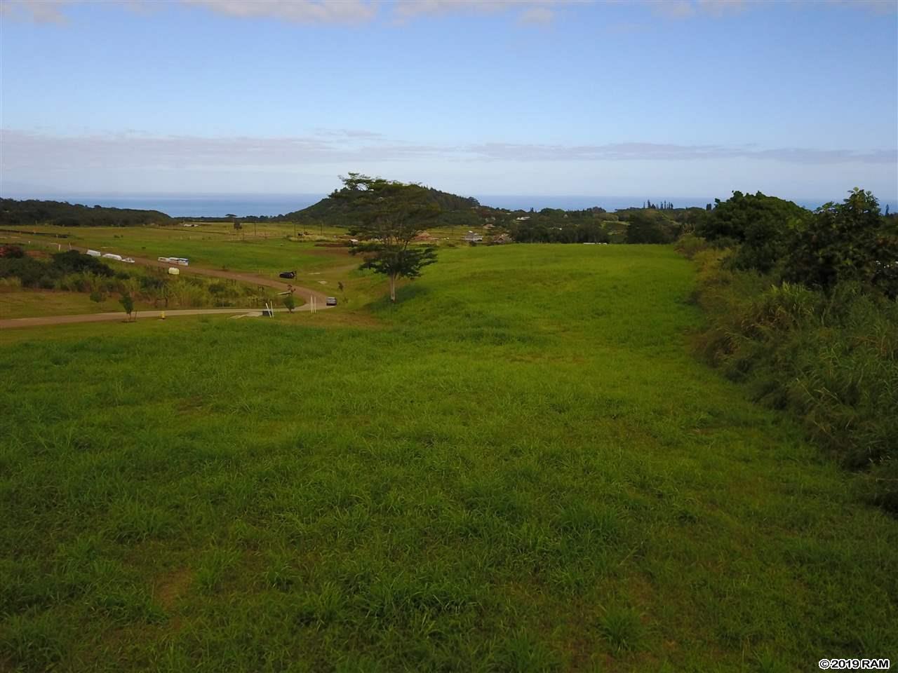 160 Hekuawa St Haiku, Hi 96708 vacant land - photo 9 of 23