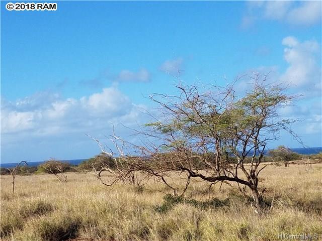 189 Pohakuloa Rd , Hi 96770 vacant land - photo 7 of 8