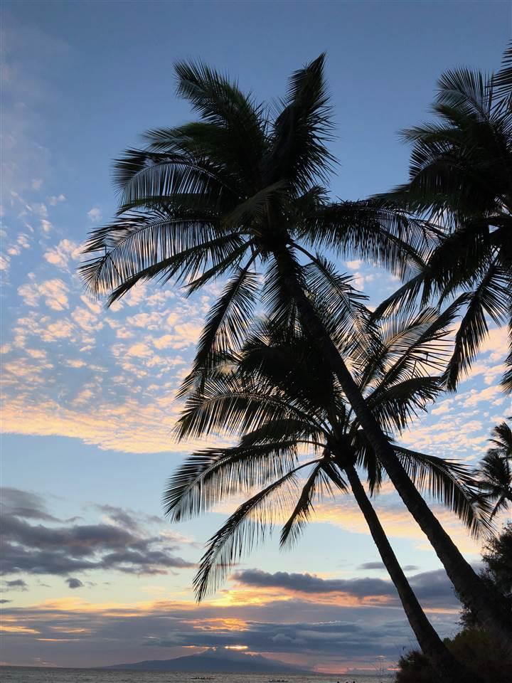 Kihei Villa condo # 109, Kihei, Hawaii - photo 21 of 30