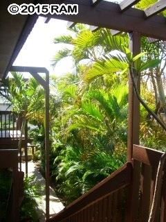 Kalama Villa condo # 204, Kihei, Hawaii - photo 17 of 20