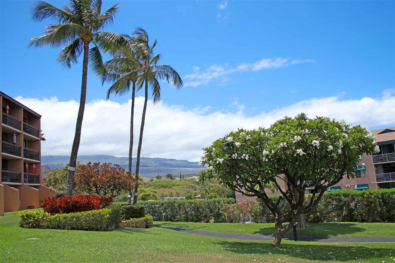 Maui Vista condo # 3403, Kihei, Hawaii - photo 28 of 29