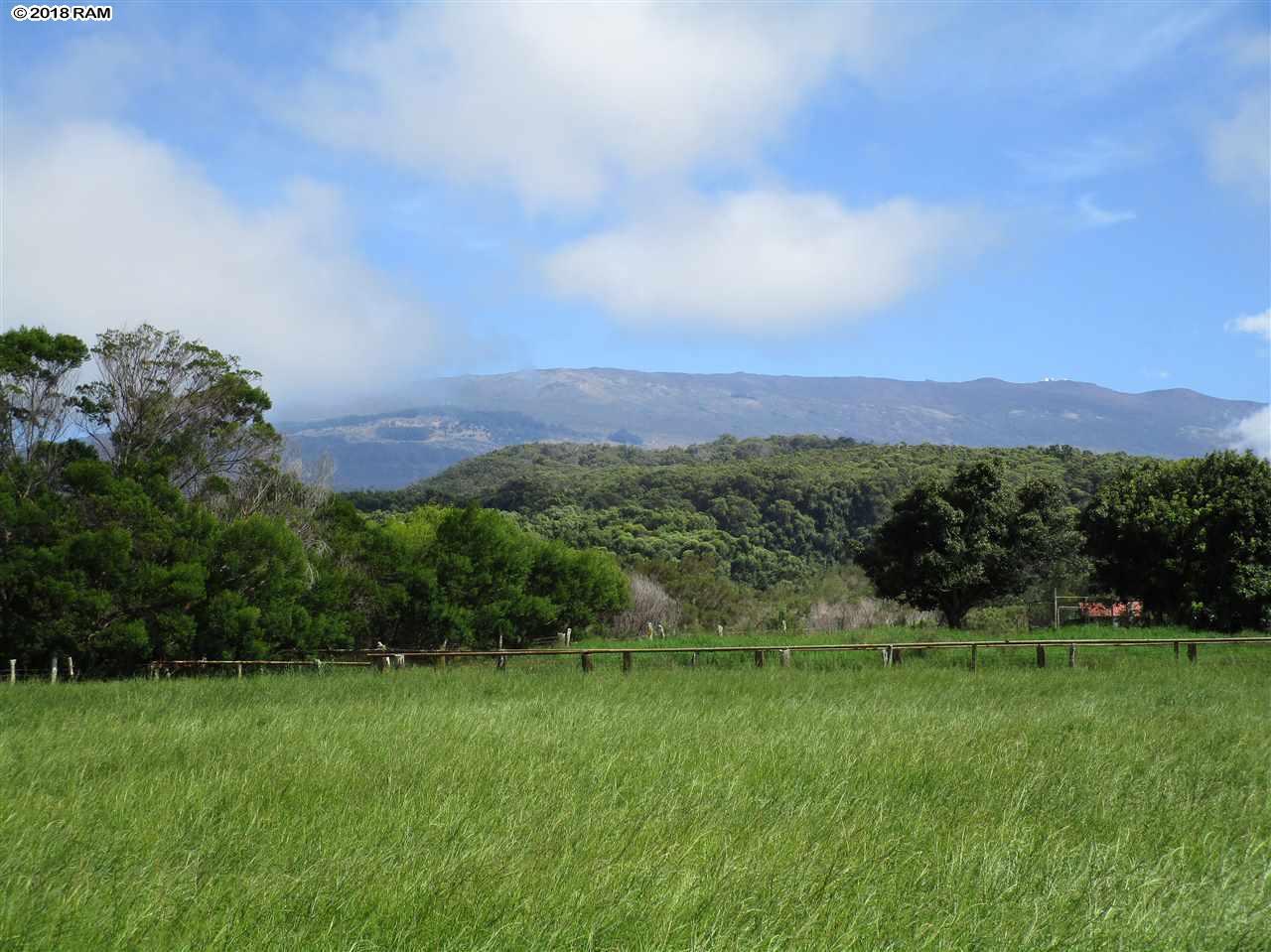 2235 Kaupakalua Rd , Hi 96708 vacant land - photo 1 of 12