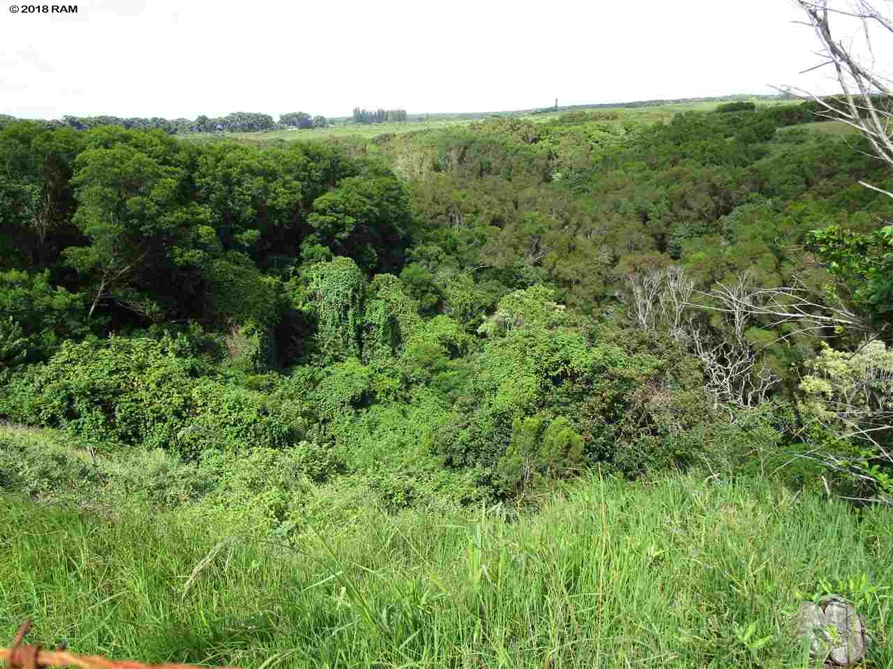 2235 Kaupakalua Rd , Hi 96708 vacant land - photo 7 of 12