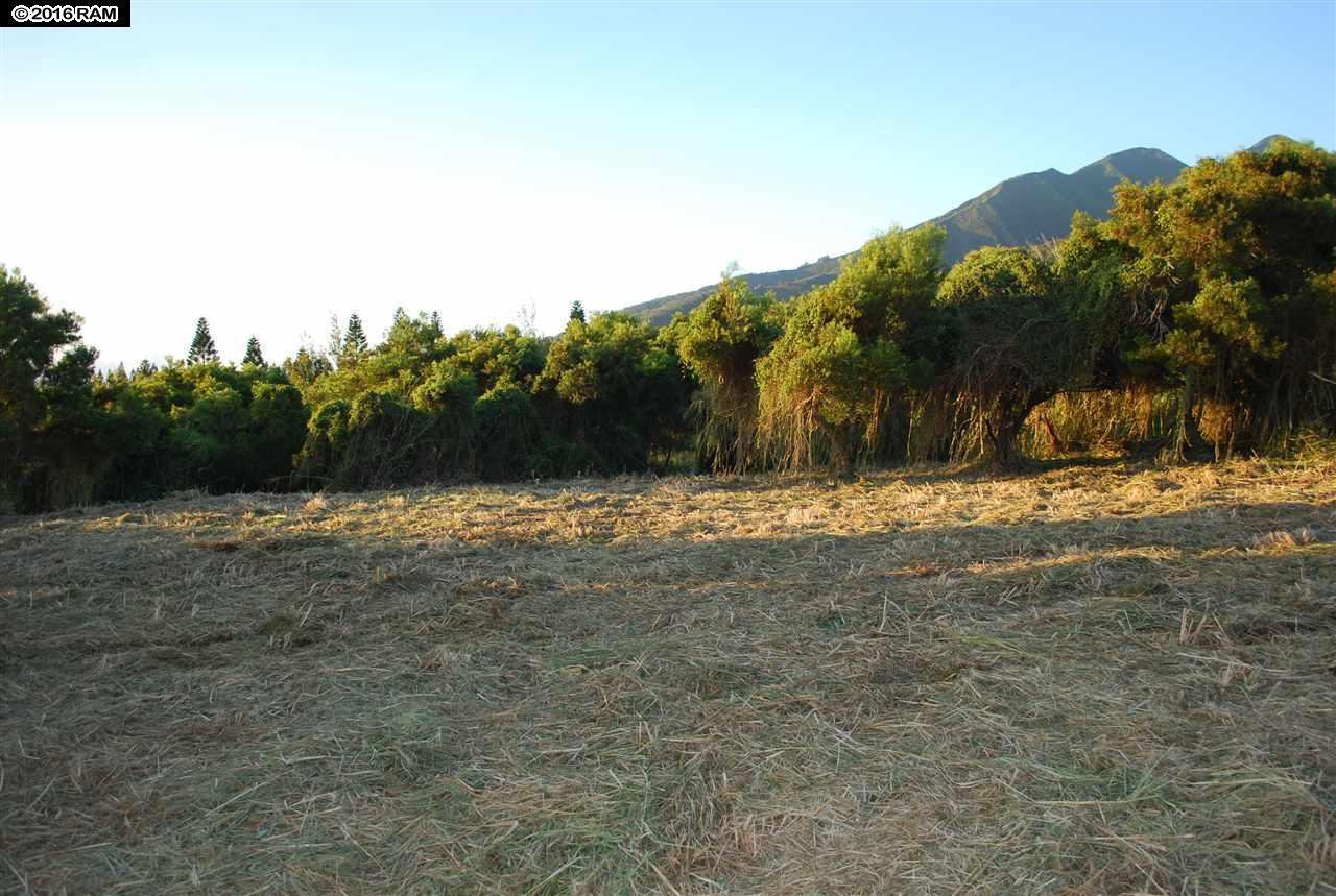 2301 Kamaile St PO Box Wailuku, Hi 96793 vacant land - photo 11 of 28