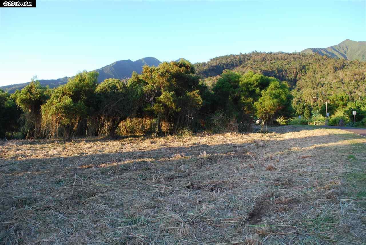 2301 Kamaile St PO Box Wailuku, Hi 96793 vacant land - photo 15 of 28