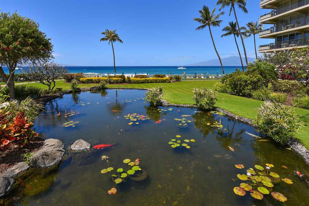 Whaler II condo # 965, Lahaina, Hawaii - photo 24 of 30