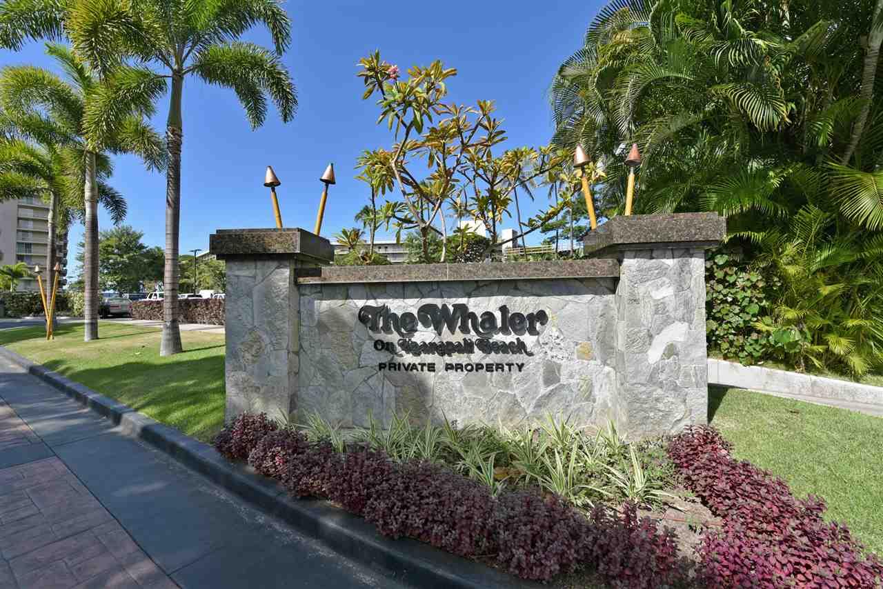 Whaler II condo # 965, Lahaina, Hawaii - photo 30 of 30