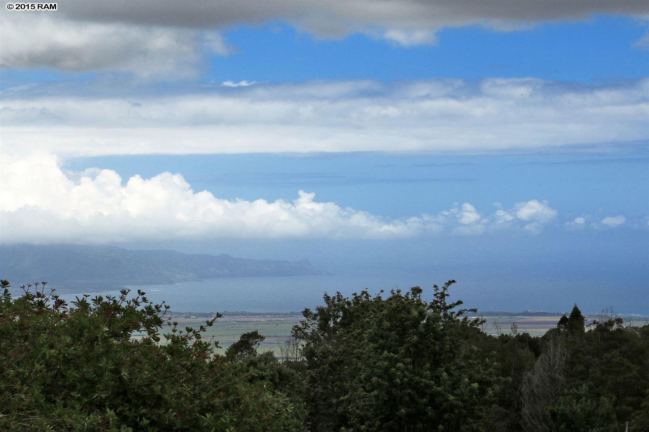 25  Kulamanu Cir , Kula/Ulupalakua/Kanaio home - photo 28 of 30