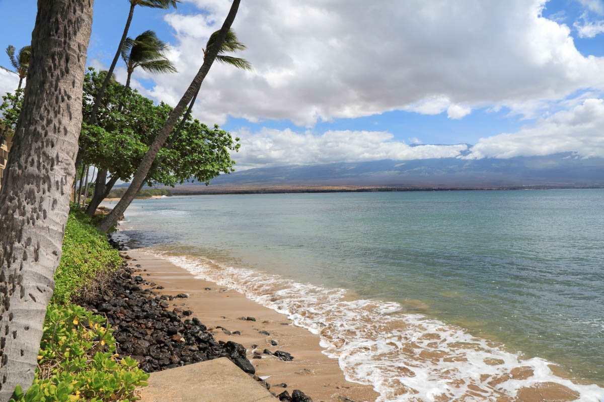 Kanai A Nalu condo # 103, Wailuku, Hawaii - photo 14 of 30