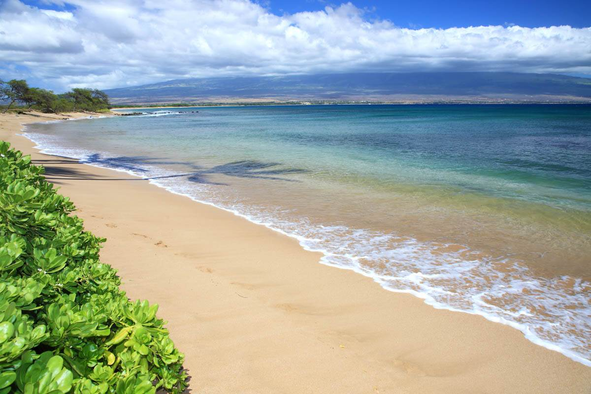 Kanai A Nalu condo # 103, Wailuku, Hawaii - photo 27 of 30