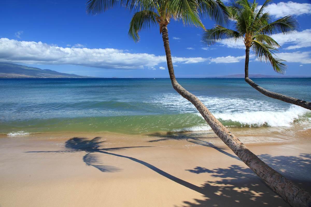 Kanai A Nalu condo # 103, Wailuku, Hawaii - photo 28 of 30