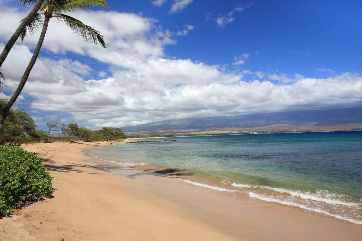 Kanai A Nalu condo # 103, Wailuku, Hawaii - photo 30 of 30