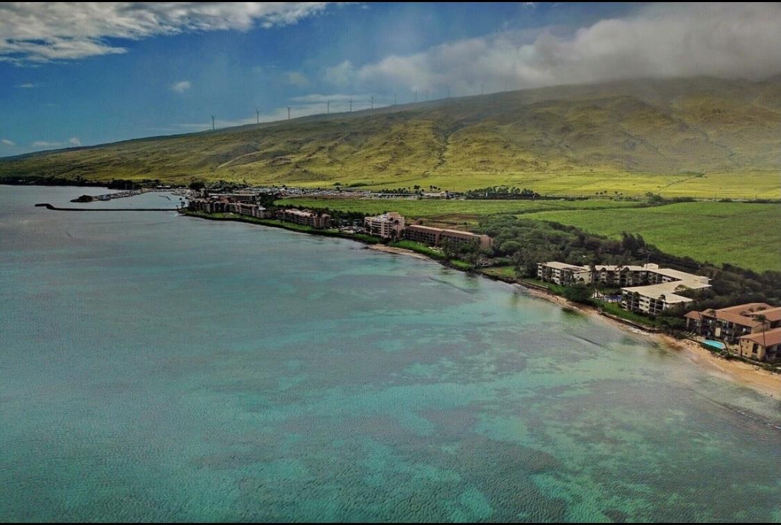 Kanai A Nalu condo # 210, Wailuku, Hawaii - photo 8 of 30