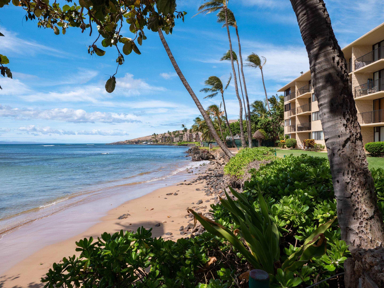 Kanai A Nalu condo # 314, Wailuku, Hawaii - photo 25 of 30