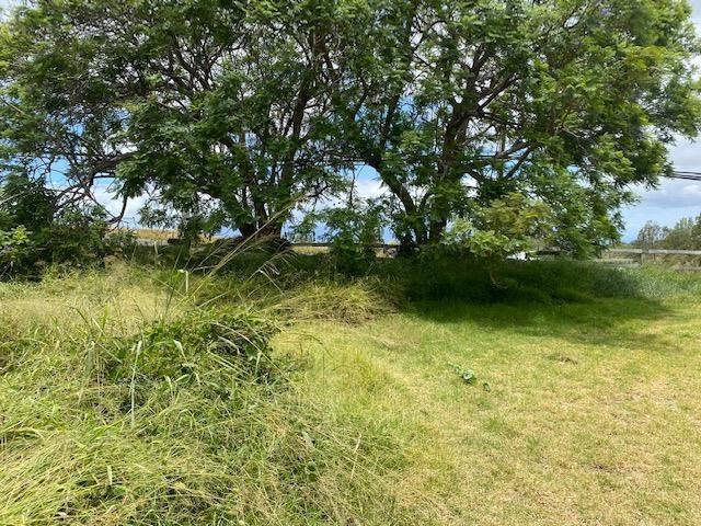 2533 Lower Kula Rd 1 Kula, Hi 96790 vacant land - photo 3 of 8