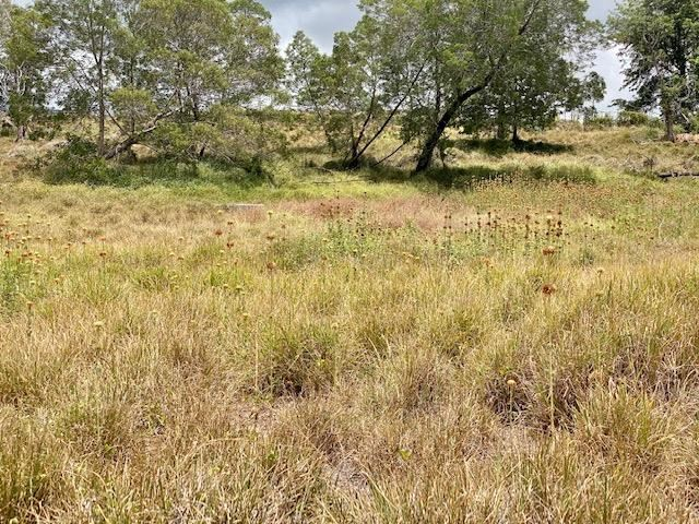 2533 Lower Kula Rd 1 Kula, Hi 96790 vacant land - photo 5 of 8