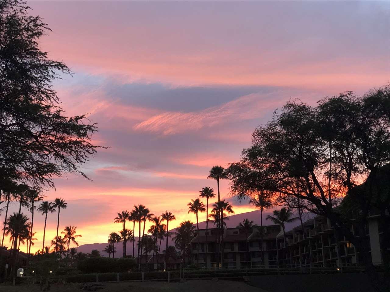 Maui Banyan condo # H511, Kihei, Hawaii - photo 13 of 17