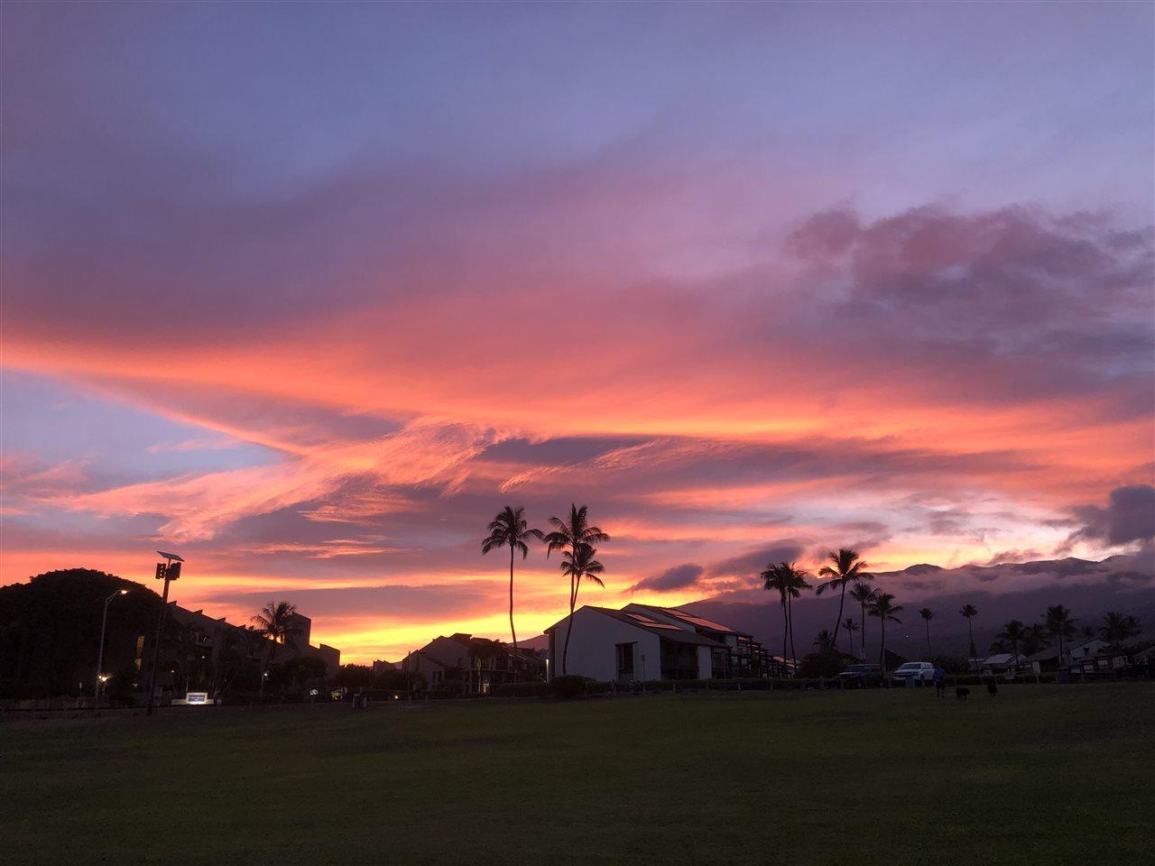 Maui Banyan condo # H511, Kihei, Hawaii - photo 14 of 17