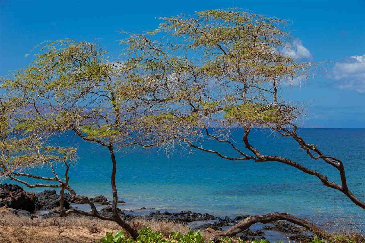 Kamaole Sands condo # 6-102, Kihei, Hawaii - photo 24 of 30