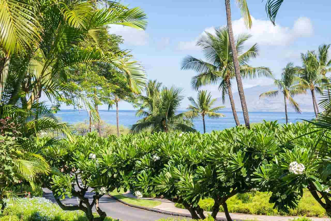Maui Kamaole condo # A112, Kihei, Hawaii - photo 29 of 30