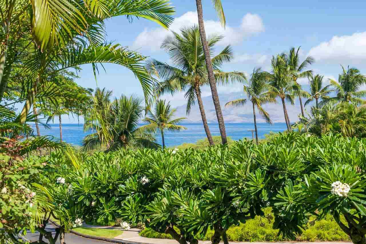 Maui Kamaole condo # A112, Kihei, Hawaii - photo 30 of 30