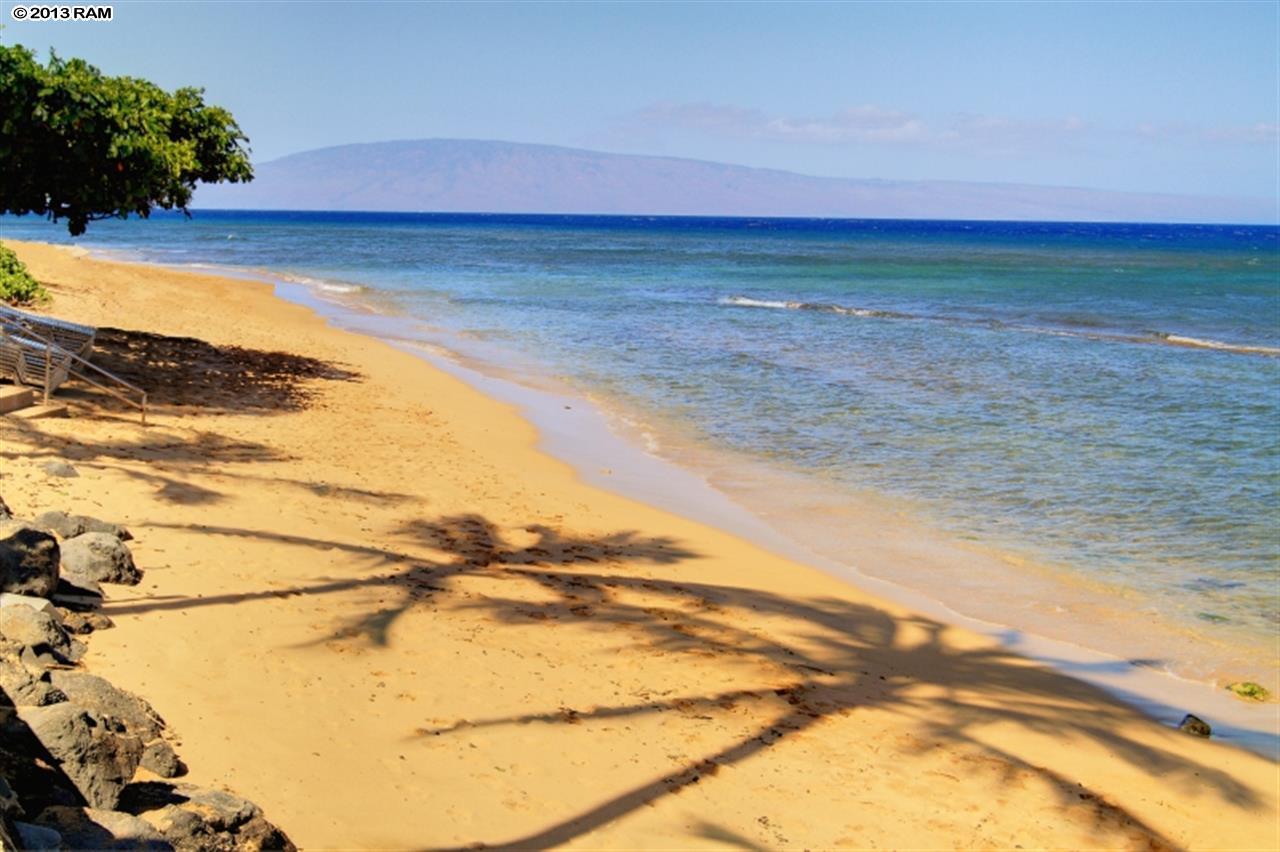 Kaanapali Shores condo # 460, Lahaina, Hawaii - photo 29 of 29