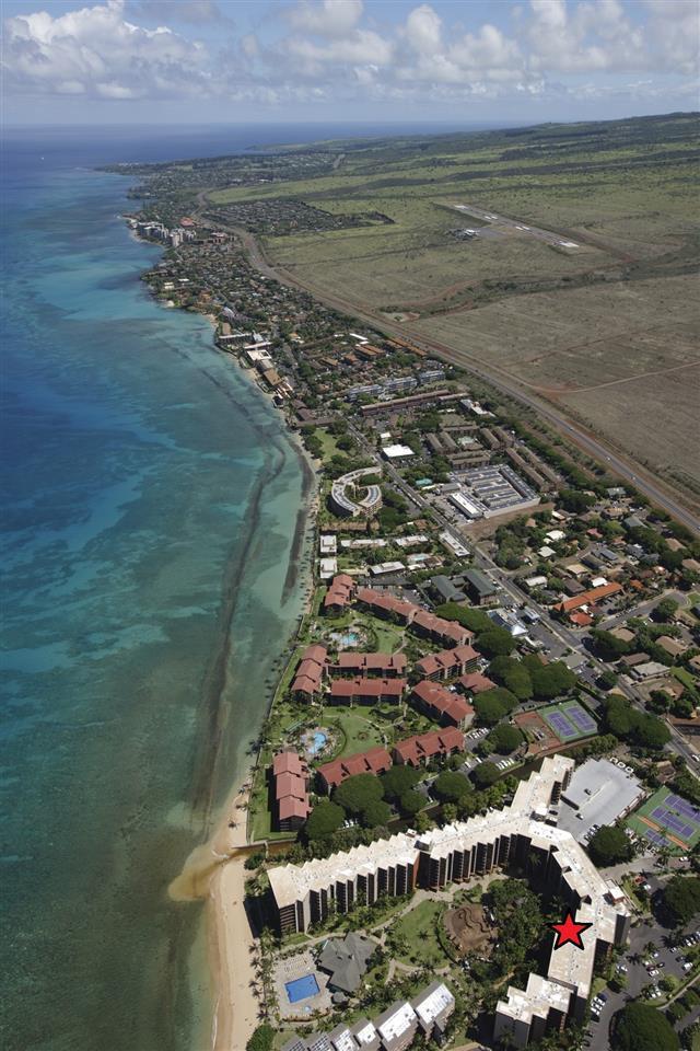 Kaanapali Shores condo # 644, Lahaina, Hawaii - photo 11 of 29